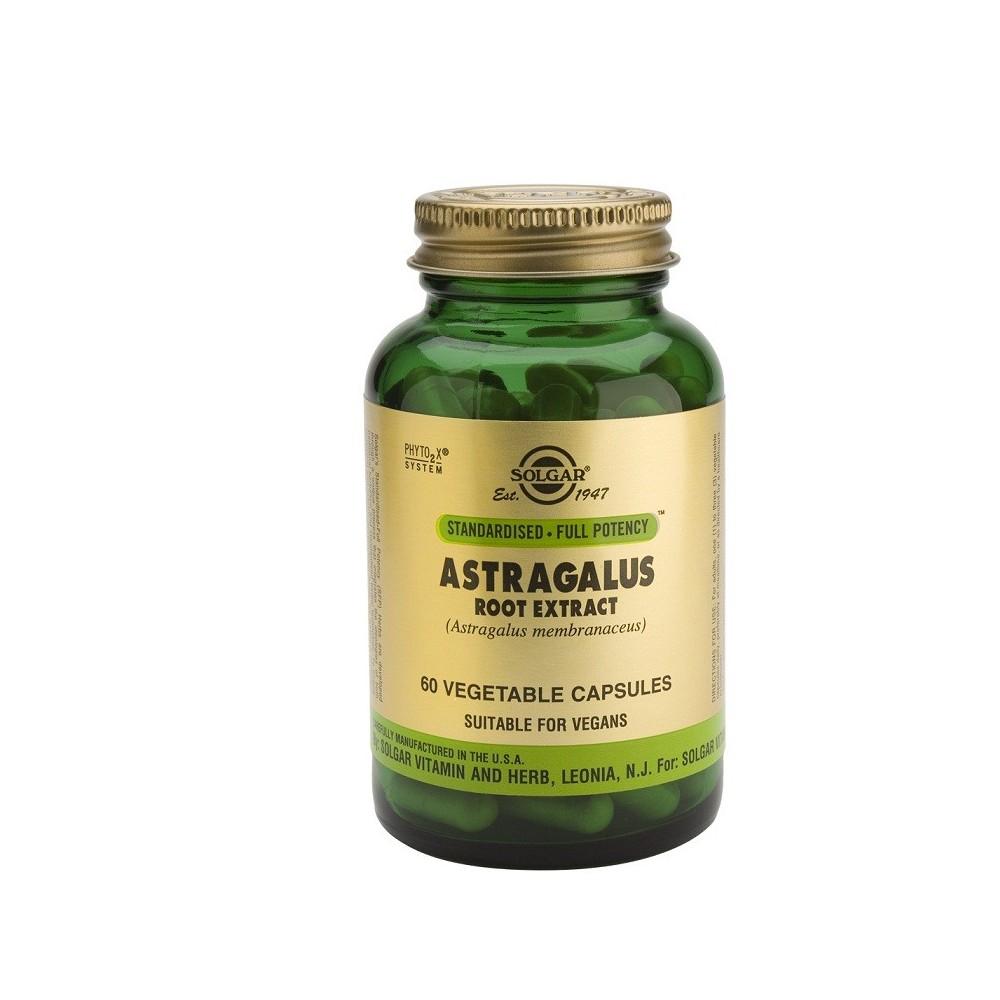 Astragalus Root Extract (Astralagulus membranaceus) 60 Cápsulas Solgar SOLGAR 184106 Sistema inmunitario salud.bio