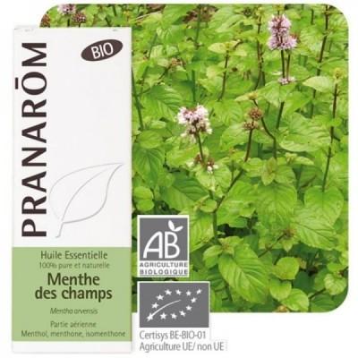 Menta del Campo Aceite Esencial Natural BIO Quimiotipado de Pranarôm Pranarom 225958 Acéites esenciales salud.bio