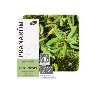 Té de labrador Aceite Esencial Natural BIO Quimiotipado de Pranarôm Pranarom 22368 Acéites esenciales salud.bio