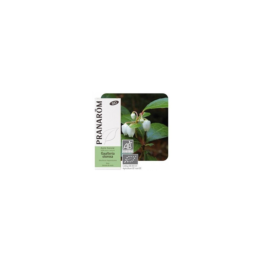 Gaulteria Olorosa Aceite Esencial Natural Quimiotipado de Pranarôm Pranarom 22367 Acéites esenciales salud.bio