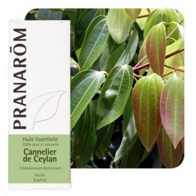 Canela de Ceilan Corteza Aceite Esencial Natural Quimiotipado de Pranarôm Pranarom 22123 Acéites esenciales salud.bio