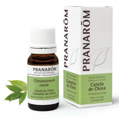 Canela China Aceite Esencial Natural Quimiotipado de Pranarôm Pranarom 227191 Acéites esenciales salud.bio