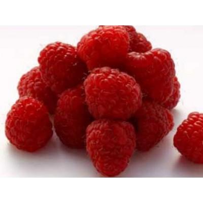 Raspberry Ketones 30 VegCaps. Apto para veganos de Solaray SOLARAY 49787 Control de Peso salud.bio