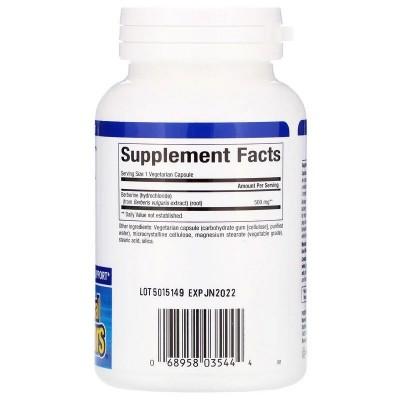 WellBetX Berberine, 500 mg, 60 Cápsulas vegetales de Natural Factors Natural Factors NFS-03544 Ayuda Glucemia y Diabetes salu...