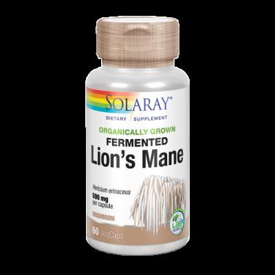 Melena de León (Lion's Mane) 500mg 60 VegCaps. de Solaray SOLARAY 71983 Plantas Medicinales salud.bio