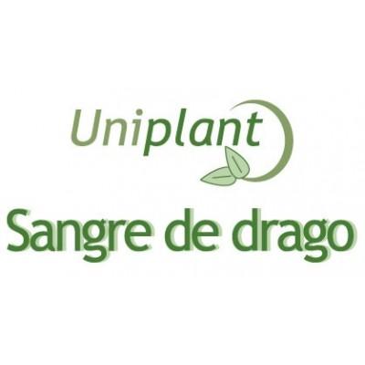 Uniplant Sangre de Drago de Laboratorios Tegor Tegor FTU01006 Plantas Medicinales salud.bio