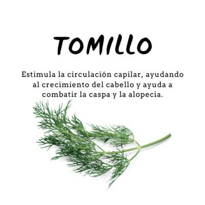 Champú Proteico de Tomillo 300ml de D´Shila D´Shila 5011040300 Cosmética Natural salud.bio
