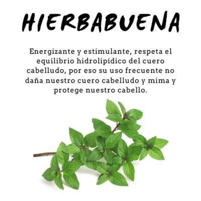 Champú Proteico de HierbaBuena 300ml de D´Shila D´Shila 5011090300 Cosmética Natural salud.bio