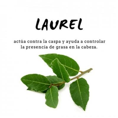 Champú Proteico de Laurel 300ml de D´Shila D´Shila 5011100300 Cosmética Natural salud.bio