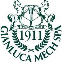Gianluca Mech.jpg