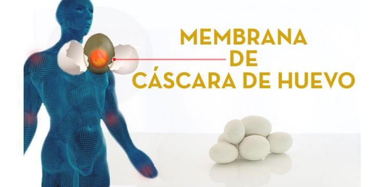 CUALIDADES DE LA MEMBRANA DE CÁSCARA DE HUEVO